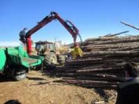 Mosqueruela contará con una empresa de aprovechamiento de biomasa con una inversión de más de 700.000 euros