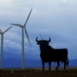 Eólica y energías renovables: La Asociación Eólica de Galicia pide recurrir el recorte de las primas
