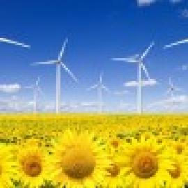 Enegías renovables: Eólica modera precio de la electricidad