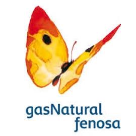 """Gas natural advierte de que las eléctricas """"no podemos soportar más carga"""" y de las pérdidas en generación"""
