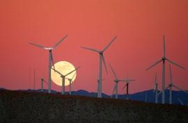 Eólica y otras energías renovables son el futuro energético de Canarias