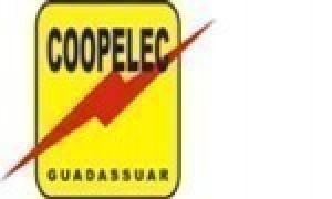 Electrica de Guadassuar Coop. V.