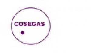 COMERCIAL SUMINISTROS ELECTRICOS Y GAS, S.L